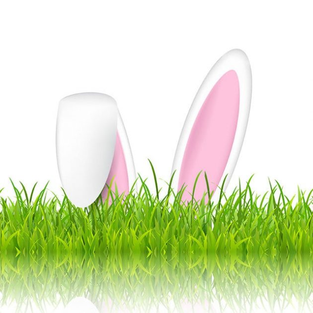 Easter bunny ears in grass on a white background